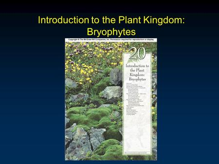 Introduction to the Plant Kingdom: Bryophytes. Outline Introduction Phylum Hepaticophyta - Liverworts Leafy Liverworts Phylum Anthocerophyta - Hornworts.