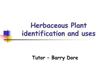 Herbaceous Plant identification and uses Tutor – Barry Dore.