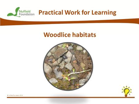 © Nuffield Foundation 2013 Practical Work for Learning Woodlice habitats.