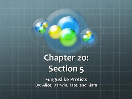 Funguslike Protists By: Alice, Darwin, Tate, and Kiara