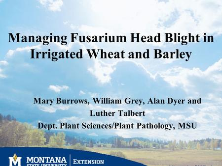 Managing Fusarium Head Blight in Irrigated Wheat and Barley Mary Burrows, William Grey, Alan Dyer and Luther Talbert Dept. Plant Sciences/Plant Pathology,