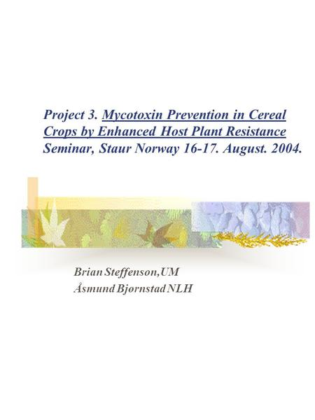 Project 3. Mycotoxin Prevention in Cereal Crops by Enhanced Host Plant Resistance Seminar, Staur Norway 16-17. August. 2004. Brian Steffenson,UM Åsmund.