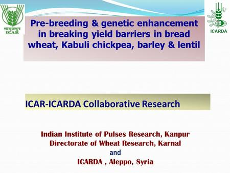 ICAR-ICARDA Collaborative Research Pre-breeding & genetic enhancement in breaking yield barriers in bread wheat, Kabuli chickpea, barley & lentil Indian.