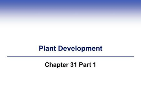Plant Development Chapter 31 Part 1.