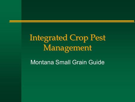 Integrated Crop Pest Management Montana Small Grain Guide.