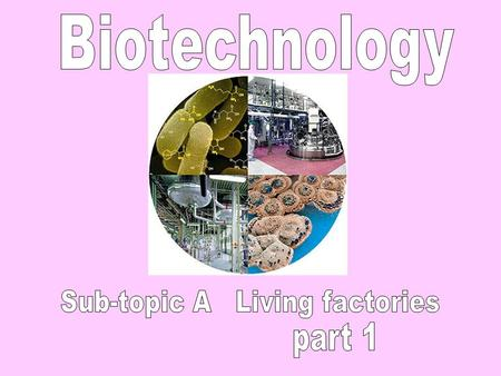 Biotechnology means using microbes to make useful products. Microbes include bacteria and yeast- a fungus. Useful products include bread, beer, wine,