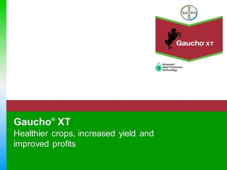 Gaucho ® XT Healthier crops, increased yield and improved profits.