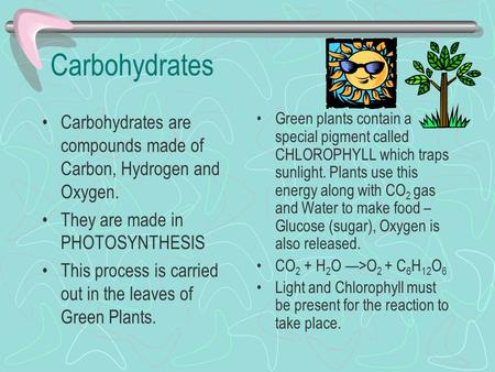 Carbohydrates Carbohydrates are compounds made of Carbon, Hydrogen and Oxygen. They are made in PHOTOSYNTHESIS This process is carried out in the leaves.