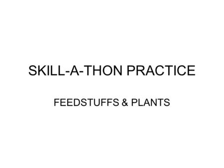 SKILL-A-THON PRACTICE
