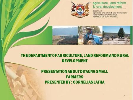THE DEPARTMENT OF AGRICULTURE, LAND REFORM AND RURAL DEVELOPMENT PRESENTATION ABOUT DITAUNG SMALL FARMERS PRESENTED BY : CORNELIAS LATHA 1.