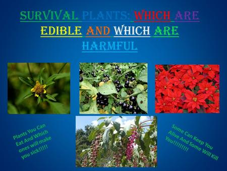 Survival Plants: Which are edible and which are harmful Plants You Can Eat And Which ones will make you sick!!!!! Some Can Keep You Alive And Some Will.