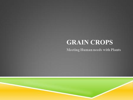 GRAIN CROPS Meeting Human needs with Plants. OBJECTIVES: 1) Name Grain Crops, grain uses, and leading grain production states 2) Describe how to select.