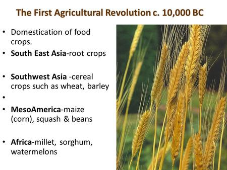 The First Agricultural Revolution c. 10,000 BC Domestication of food crops. South East Asia-root crops Southwest Asia -cereal crops such as wheat, barley.