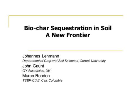 Johannes Lehmann Department of Crop and Soil Sciences, Cornell University John Gaunt GY Associates, UK Marco Rondon TSBF-CIAT, Cali, Colombia Bio-char.