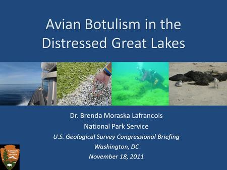 Avian Botulism in the Distressed Great Lakes Dr. Brenda Moraska Lafrancois National Park Service U.S. Geological Survey Congressional Briefing Washington,