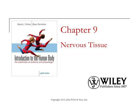 Chapter 9 Nervous Tissue