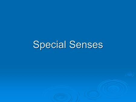 Special Senses.  Special senses allow the human body to react to the environment. Helps the body to see, hear, taste, smell, and maintain balance. 