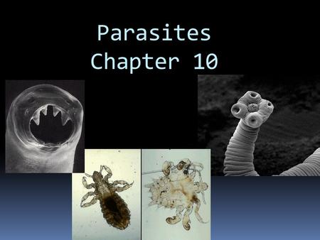 Parasites Chapter 10. Parasitology  Parasites that infect humans have various classifications, characteristics, and life cycles  Parasites are organisms.