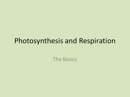 Photosynthesis and Respiration The Basics. How do organisms obtain energy? Plants get their energy from the sun! Plants are called autotrophs Auto = Self.