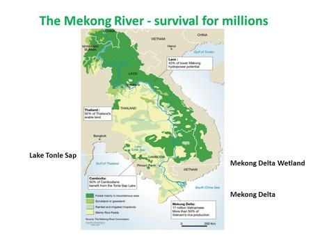 The Mekong River - survival for millions Lake Tonle Sap Mekong Delta Mekong Delta Wetland.