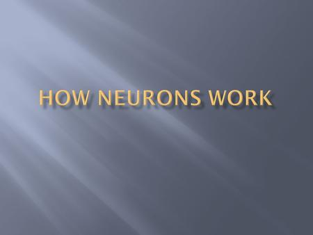  What Do Neurons Have to Do With Psychology?  How Do Neurons Communicate?  How Can Neurons Produce Complex Processes?  How is the Nervous System.