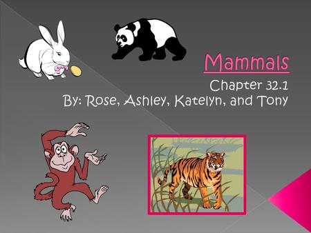 Chapter 32.1 By: Rose, Ashley, Katelyn, and Tony