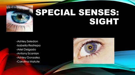 SPECIAL SENSES: SIGHT -Ashley Zeledon -Isabella Restrepo -Ariel Delgado -Antony Scanlan -Ashley Gonzalez -Carolina Matute.