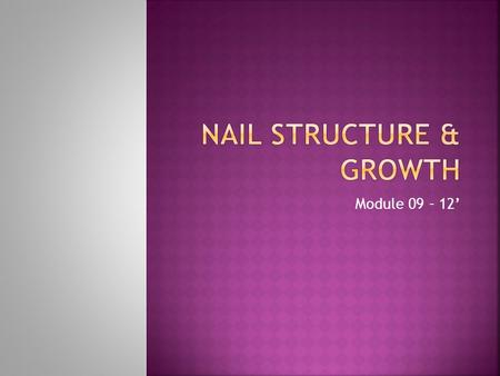 Module 09 – 12'.  ** write on page 198**  Reflect general health of body  Educate yourself  Natural nail's structure & growth.