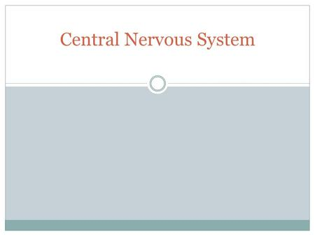 Central Nervous System. Major Anatomic regions of Brain Cerebrum Diencephalon Brainstem Cerebellum.