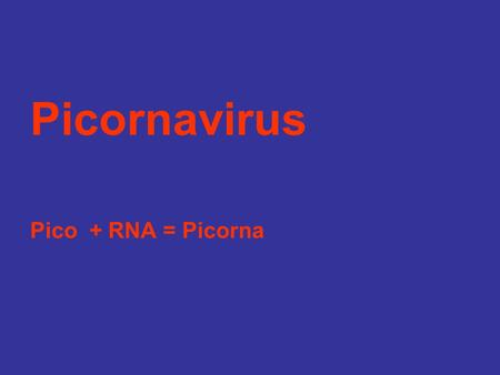 Picornavirus Pico + RNA = Picorna. Box 56-2. Unique Properties of Human Picornaviruses Virion is a naked, small (25 to 30 nm) icosahedral capsid enclosing.