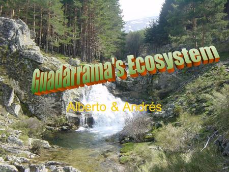 Alberto & Andrés. Index Location Biotope  Climate Climate  Soil Soil  Rocks Rocks Biocenosis  Flora Flora  Fauna Fauna Other Things(1) Other Things(2)Other.