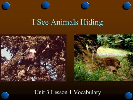 I See Animals Hiding Unit 3 Lesson 1 Vocabulary. natural o Not learned or taught, but something one is born with. o Regular, normal, usual It is natural.