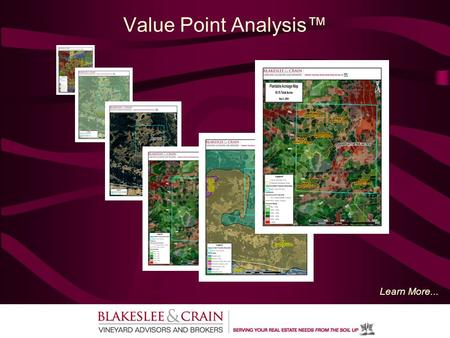 Value Point Analysis™ Learn More.... What is Value Point Analysis™? Value Point Analysis™ (VPA): Determines Gross/Net Plantable Acres using a GIS Mapping.