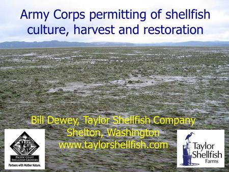 Army Corps permitting of shellfish culture, harvest and restoration Bill Dewey, Taylor Shellfish Company Shelton, Washington www.taylorshellfish.com.