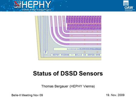 Belle-II Meeting Nov 09 19. Nov. 2009 Thomas Bergauer (HEPHY Vienna) Status of DSSD Sensors.