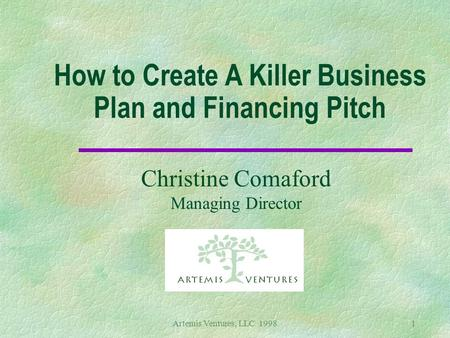Artemis Ventures, LLC 19981 How to Create A Killer Business Plan and Financing Pitch Christine Comaford Managing Director.