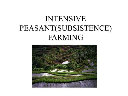 INTENSIVE PEASANT(SUBSISTENCE) FARMING. Wet Rice Farming Where ? South and East Asia ( Malaysia, Indonesia and SE China) Tropical /Equatorial climates.