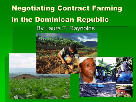 Negotiating Contract Farming in the Dominican Republic By Laura T. Raynolds.