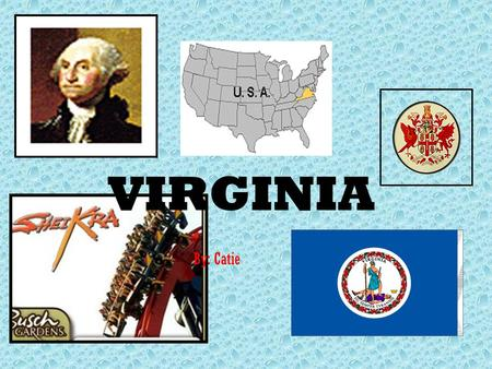 VIRGINIA By: Catie VIRGINIA RULES!!!! HISTORY FAMOUS PEOPLE SOURCES STATE FLAG SYMBOLS WHY WOULD YOU WANT TO GO TO VIRGINIA This will appear on every.