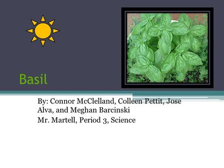 Basil By: Connor McClelland, Colleen Pettit, Jose Alva, and Meghan Barcinski Mr. Martell, Period 3, Science.