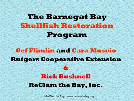 ©ReClam the Bay www.reclamthebay.org The Barnegat Bay Shellfish Restoration Program Gef Flimlin and Cara Muscio Rutgers Cooperative Extension & Rick Bushnell.