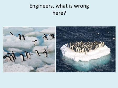 Engineers, what is wrong here?. There are penguins all over the world, not just in Antarctica. The red dots indicate where penguins live. There are penguins.