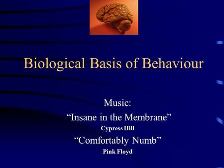 "Biological Basis of Behaviour Music: ""Insane in the Membrane"" Cypress Hill ""Comfortably Numb"" Pink Floyd."