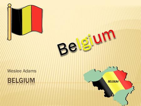 Weslee Adams.  In all there are 10, 431, 477 people and counting right now in Belgium.  Belgium ranks 80 th overall in the world on the population ranks.