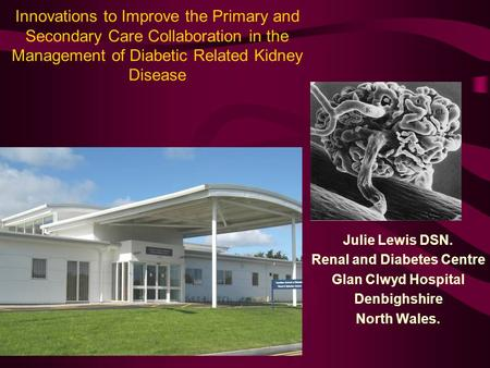 Innovations to Improve the Primary and Secondary Care Collaboration in the Management of Diabetic Related Kidney Disease Julie Lewis DSN. Renal and Diabetes.