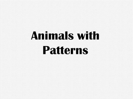 Animals with Patterns. Reasons Animals Have Patterned Coats To scare predators Camouflage Because it's unique!