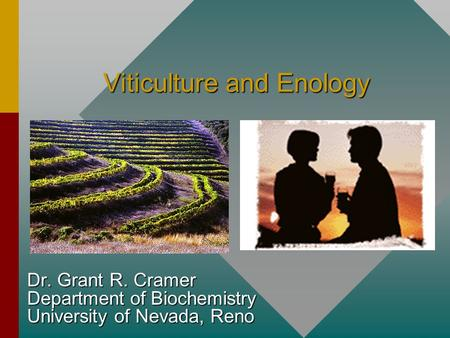 Viticulture and Enology Dr. Grant R. Cramer Department of Biochemistry University of Nevada, Reno.