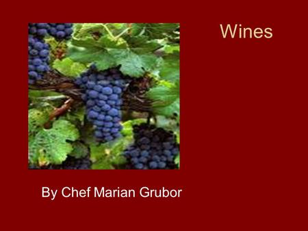 Wines By Chef Marian Grubor. From the Vine to the grape ; from the grape to the wine.