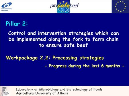 Pillar 2: Control and intervention strategies which can be implemented along the fork to farm chain to ensure safe beef Laboratory of Microbiology and.