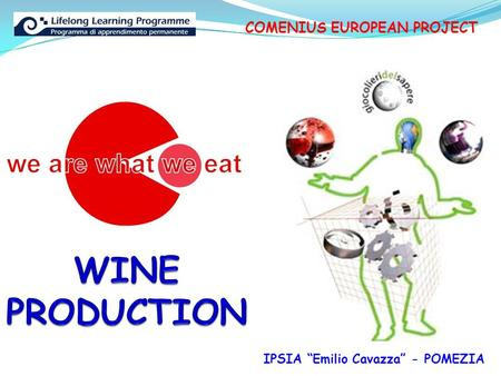 "COMENIUS EUROPEAN PROJECT IPSIA ""Emilio Cavazza"" - POMEZIA."